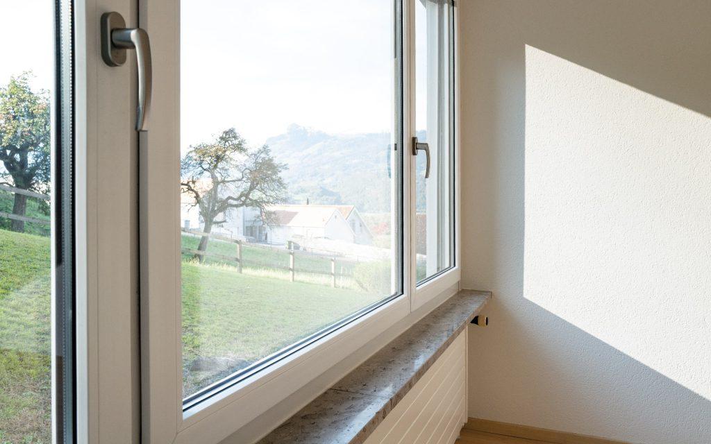 Appartement in Triesen Ausblick